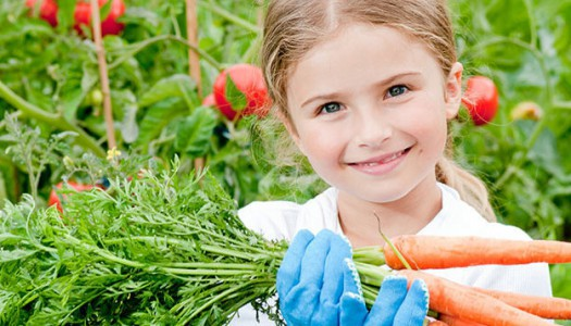 PETIZIONE: Via gli alimenti cancerogeni dalle mense scolastiche